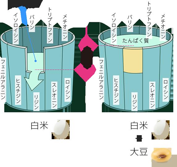 日本の食事の中心にある米 | 米と健康 | 米ライブラリー | Plenus 米食文化研究所